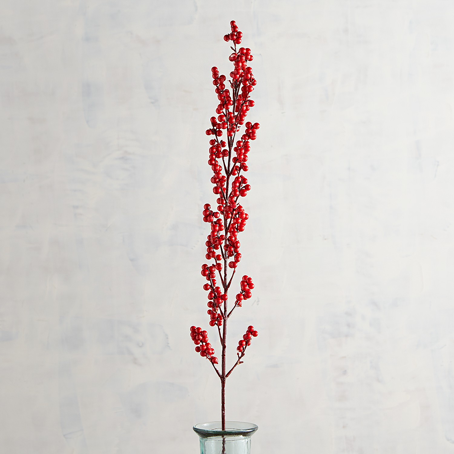 Tall Red Berry Stem