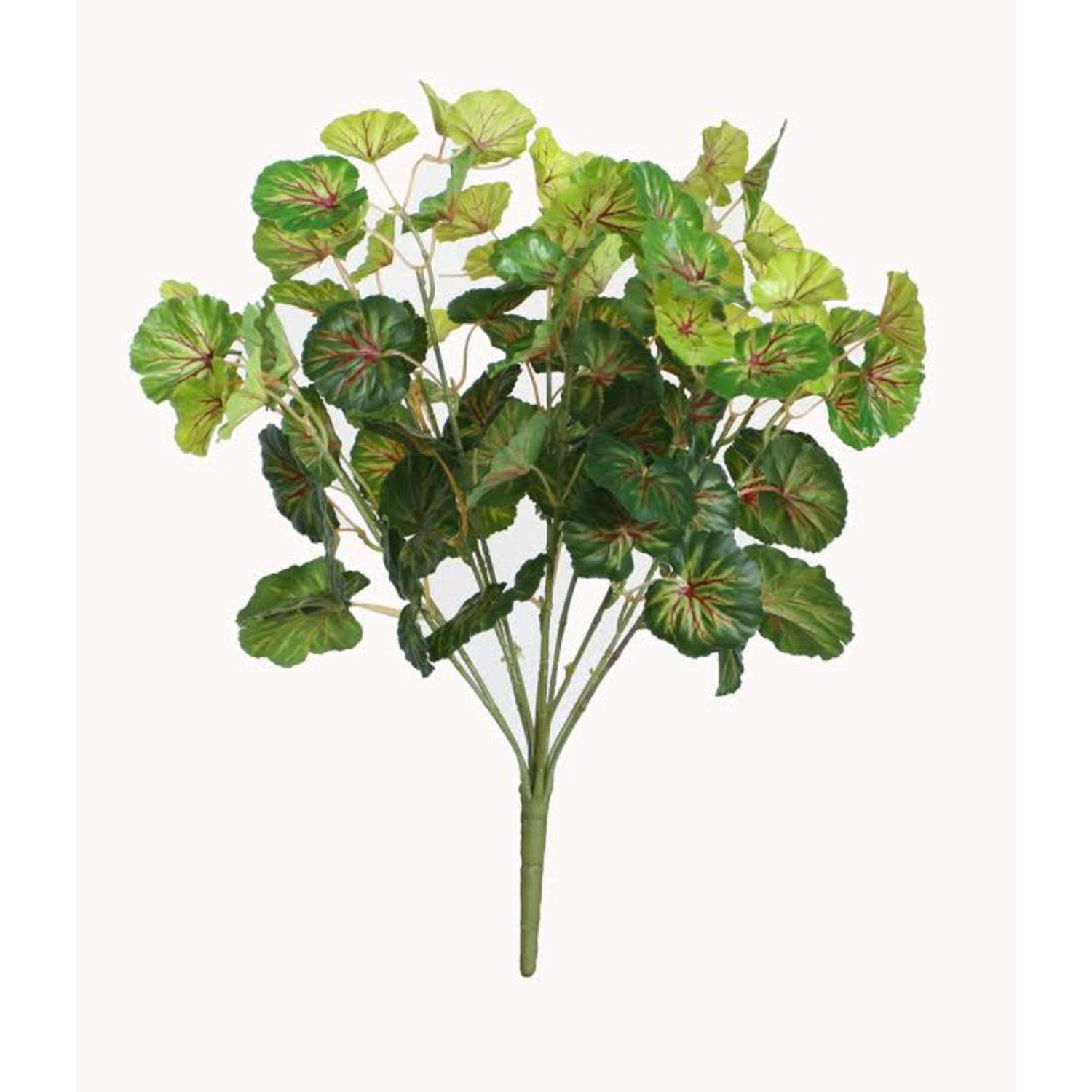"18.5"" Decorative Artificial Two Tone Green Begonia Spring Floral Bush"