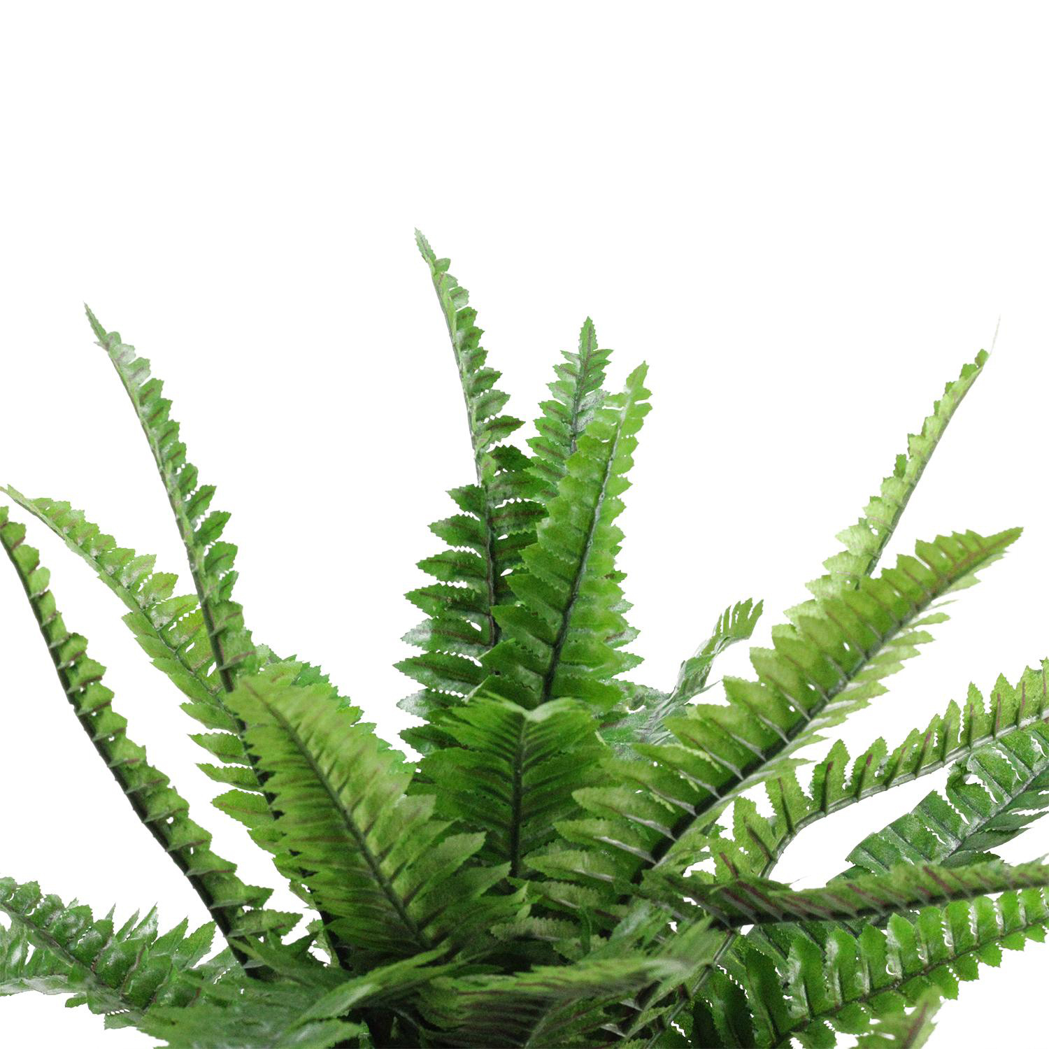 """19"""" Potted Artificial Green Boston Fern Plant Spring Decoration"""