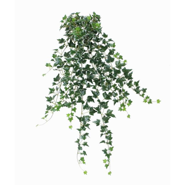 "31.50"" Decorative Green & White Ivy Spring Floral Hanging Bush"