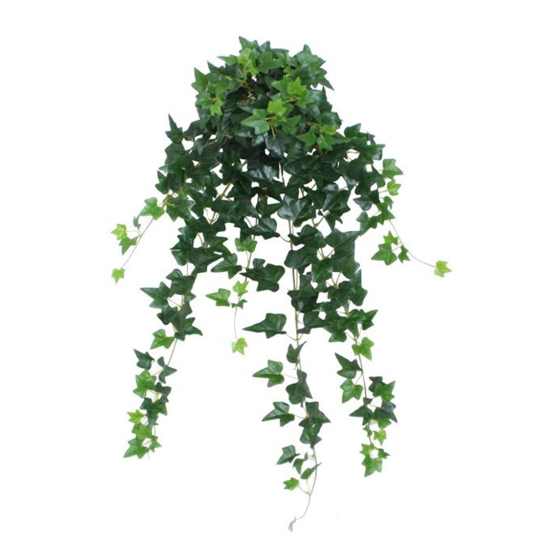 "23.75"" Decorative Garden-Style Green Ivy Spring Floral Hanging Bush"