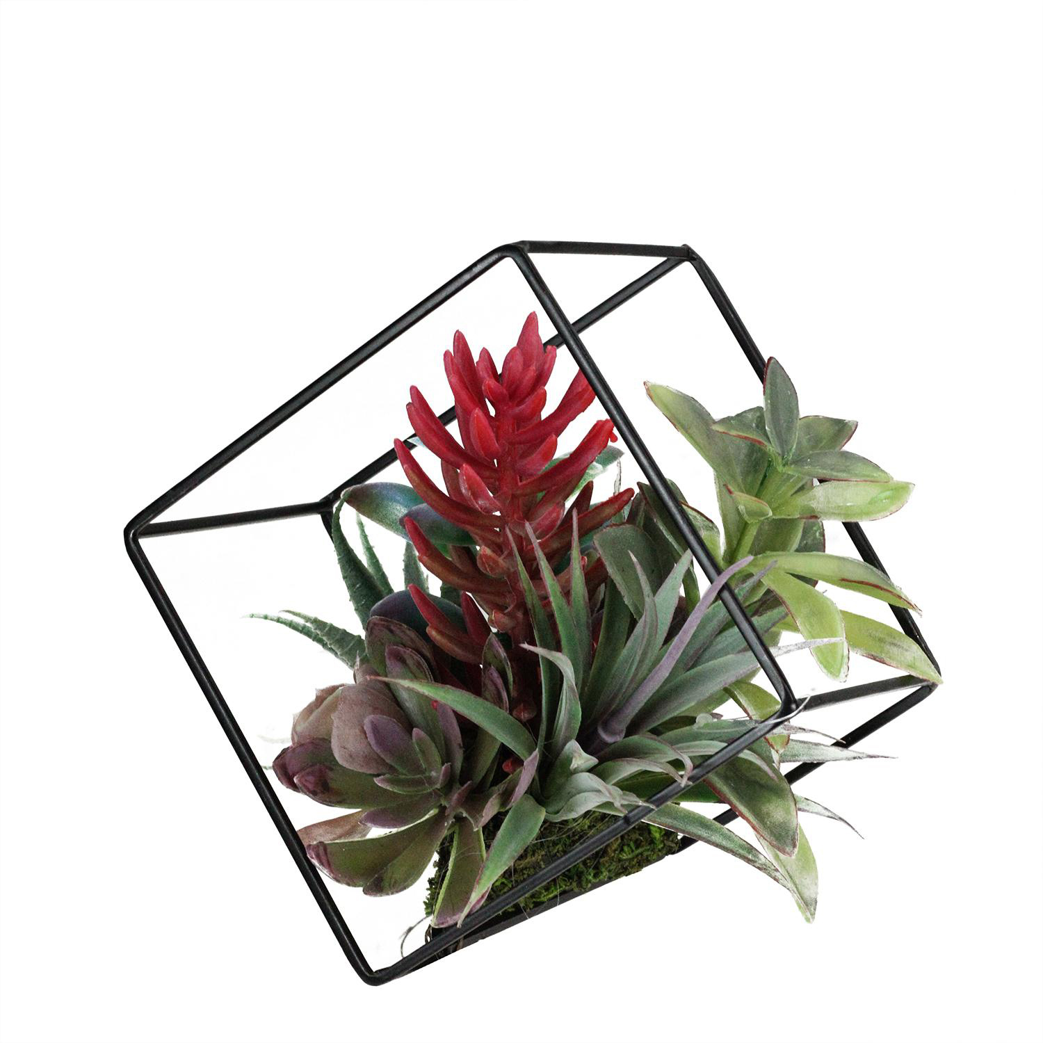 Artificial Succulents Arrangement in Decorative Offset Metal Wire Frame