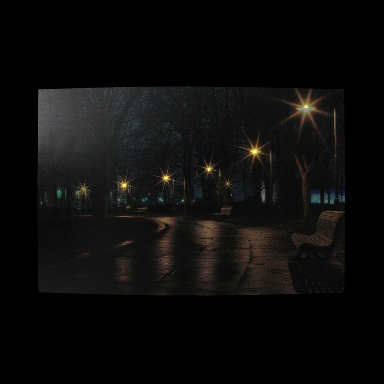 LED Light-Up Nighttime City Park Scene Canvas Wall Art