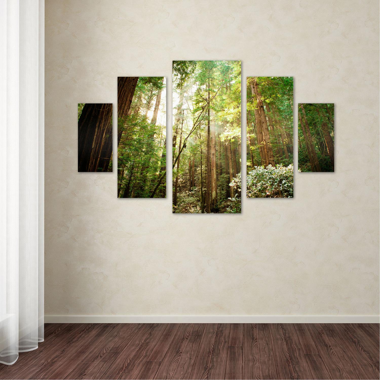 Ariane Moshayedi 'Muir Woods' Multi Panel Wall Art Set