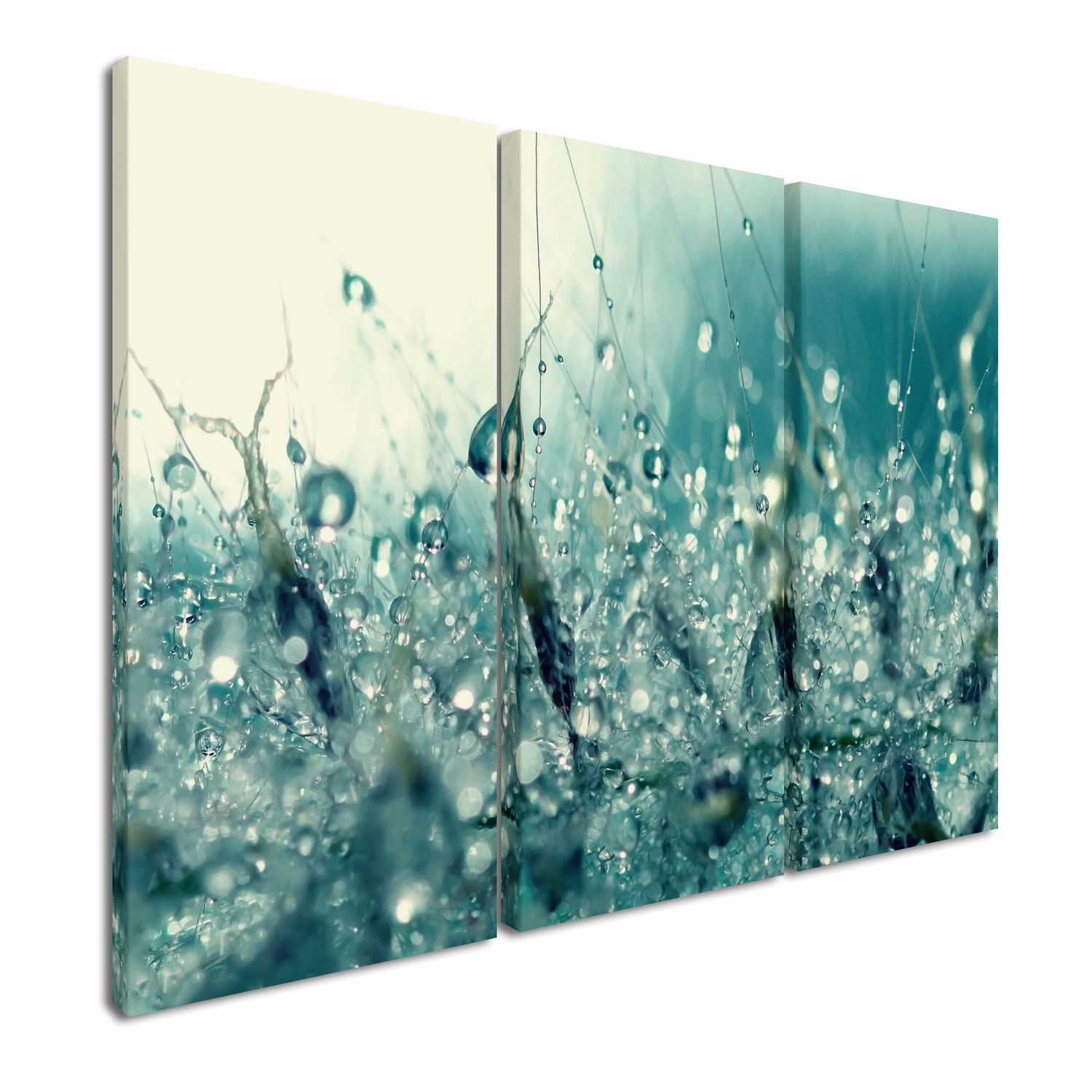 Under the Sea Wall Art Set of 3
