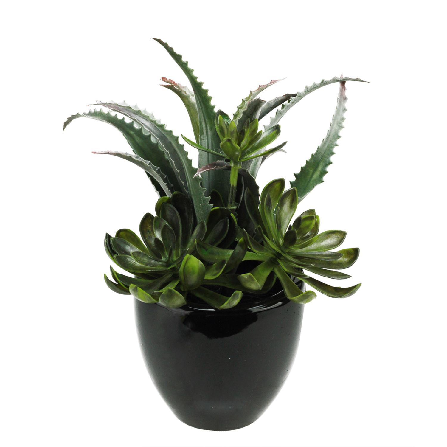 Faux Mixed Green & Red Succulents in Black Pot
