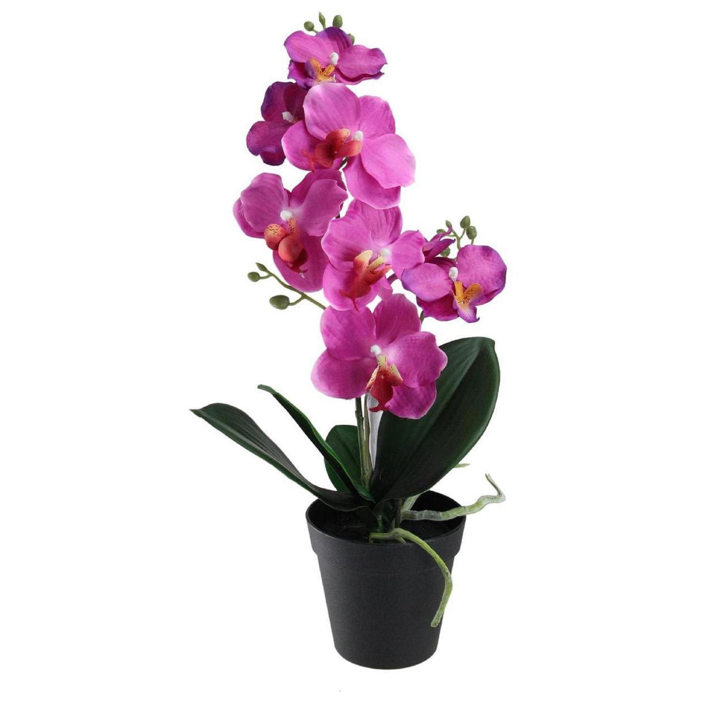 Faux Tropical Orchid Plant in Black Pot