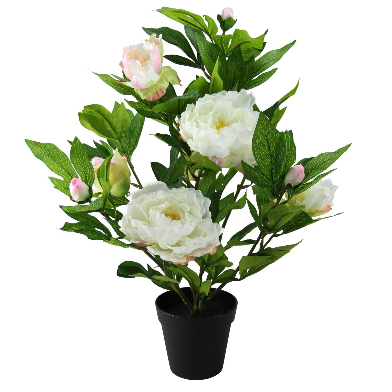 Creamy White & Pink Faux Blooming Potted Peony Plant