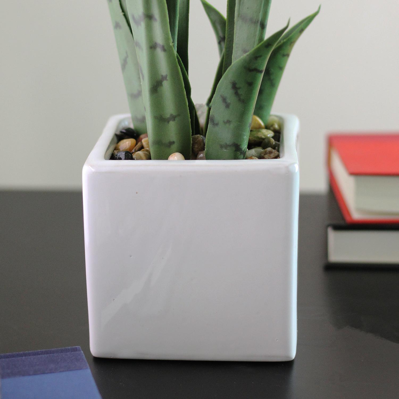 Faux Succulent Plant in Square Ceramic Pot