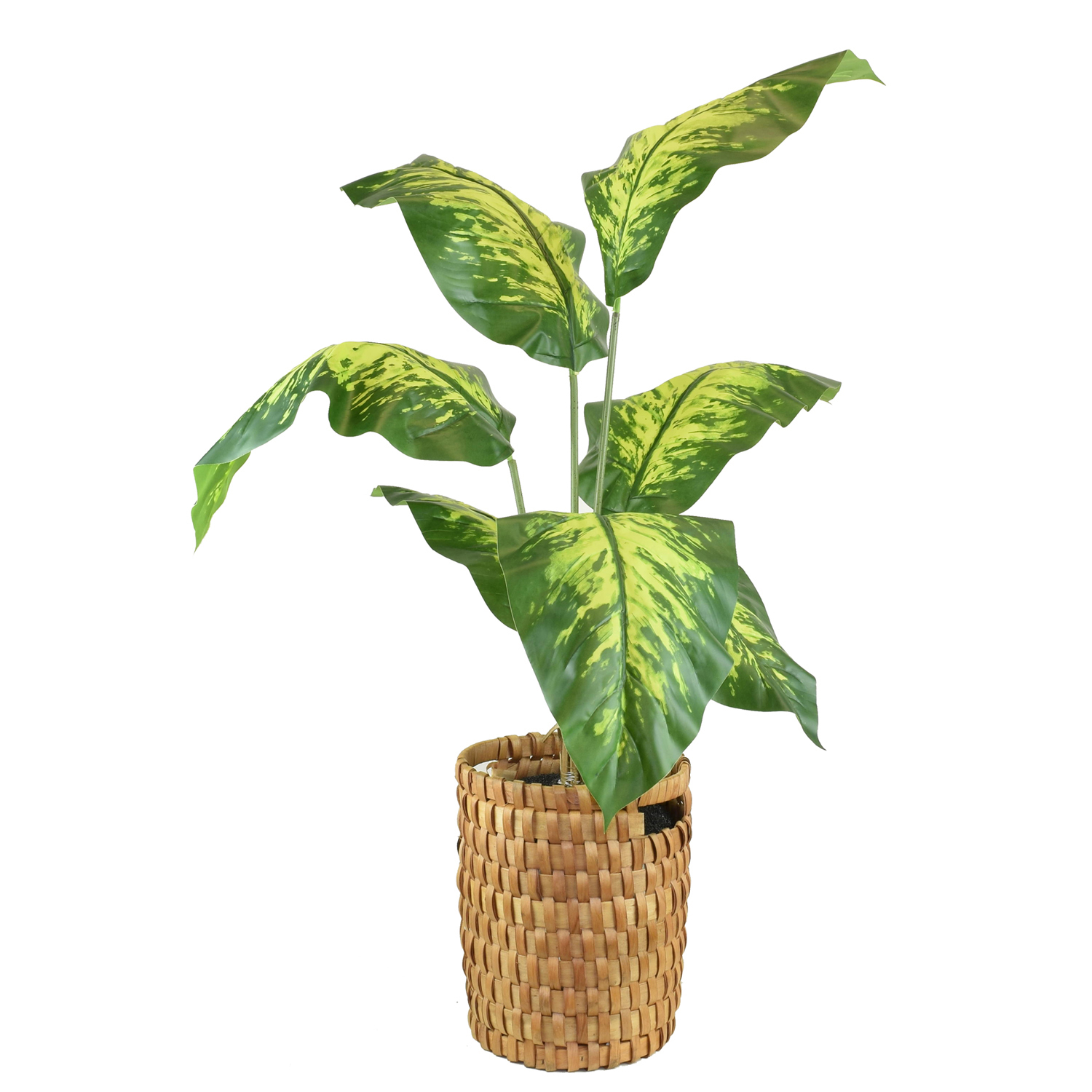Faux Tropical Dieffenbachia Floor Plant with Handle Basket
