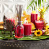 Pier 1 Reed Diffuser Island Orchard® 10oz