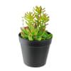 Faux Green Succulent Arrangement in Black Pot
