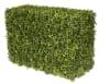 Japanese Boxwood Faux Hedge Tree