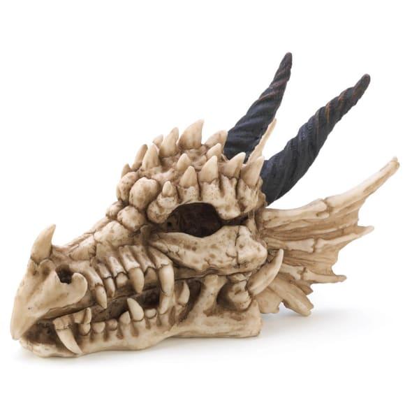 Snarling Dragon Skull Treasure Trove Box