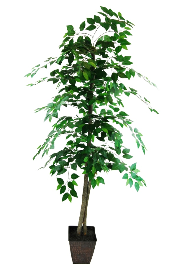 Faux Ficus Tree with Embossed Metal Container