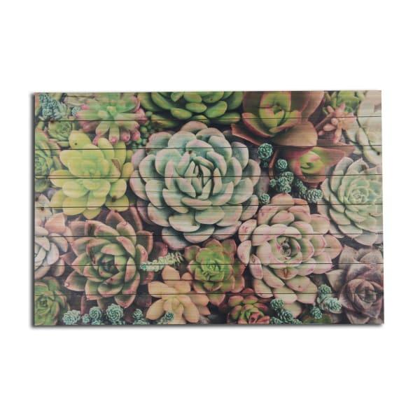 Succulent Garden Planked Wall Art