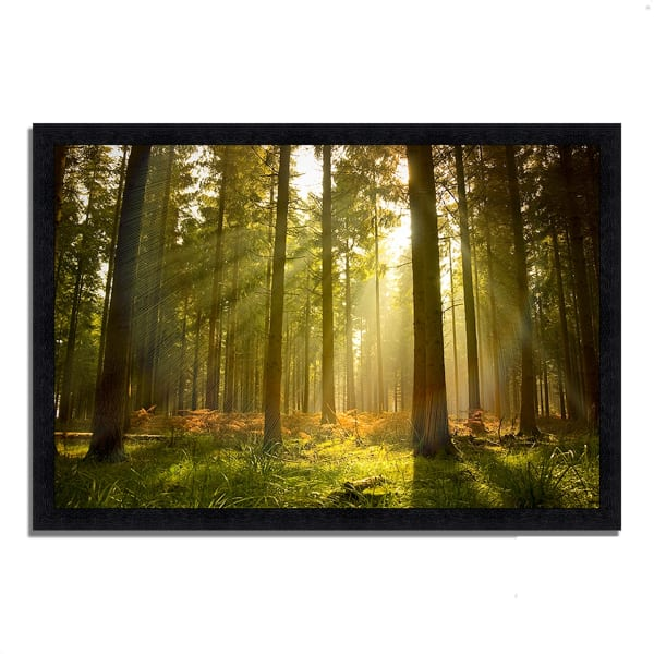 Framed Photograph Print 33 In. x 23 In. Forest at Dusk Multi Color