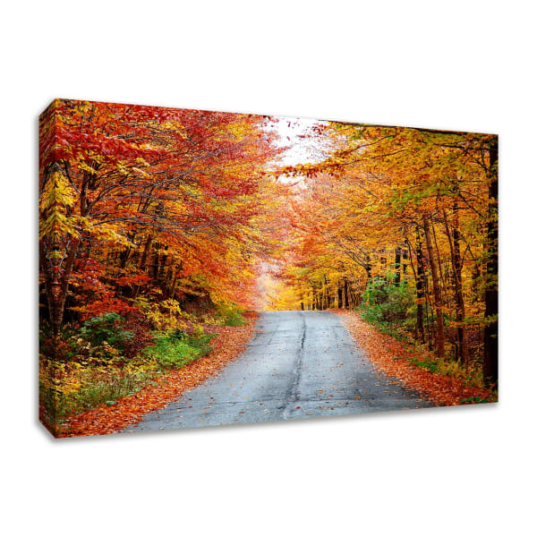 Fine Art Giclee Print on Gallery Wrap Canvas 45 In. x 30 In. Autumn Afternoon Multi Color