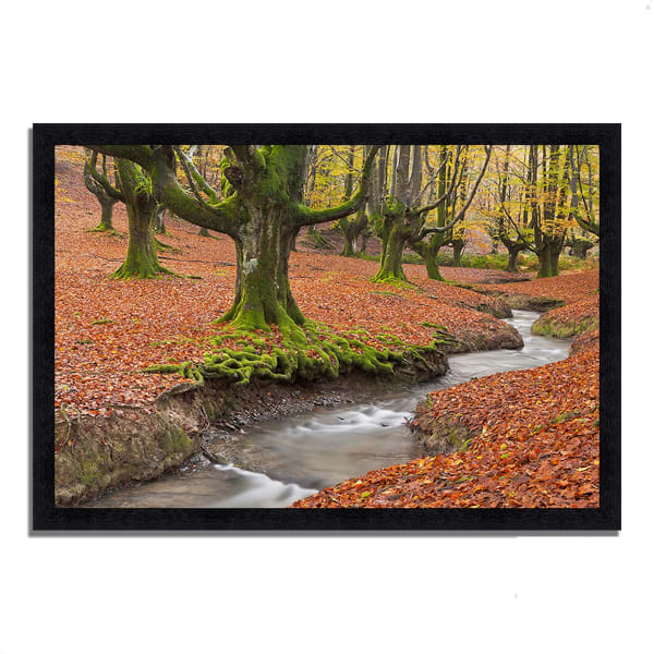 Framed Photograph Print 39 In. x 27 In. Otzarreta Beech On A Red Carpet Multi Color