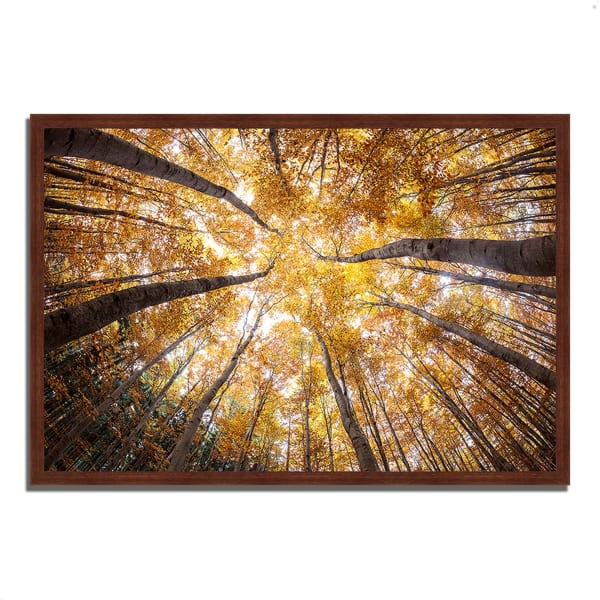 Framed Photograph Print 47 In. x 32 In. Reach For The Sky Multi Color