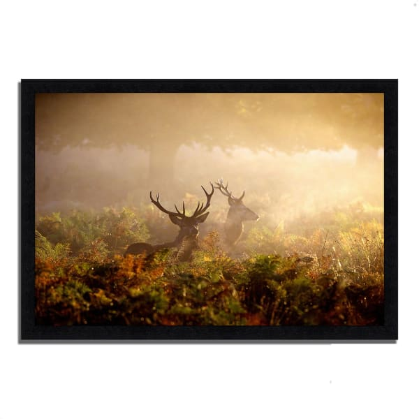 Framed Photograph Print 33 In. x 23 In. Two Stags at Dawn Multi Color