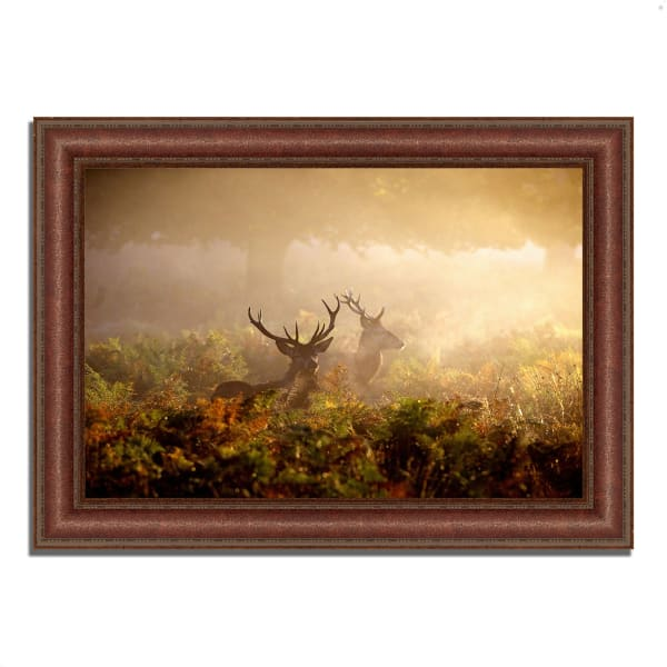Framed Photograph Print 37 In. x 27 In. Two Stags at Dawn Multi Color