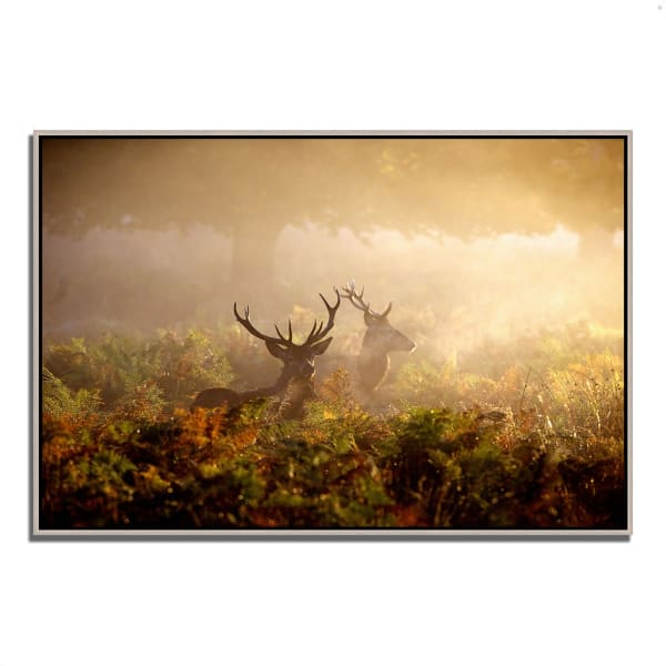 Fine Art Giclee Print on Gallery Wrap Canvas 38 In. x 26 In. Two Stags at Dawn Multi Color