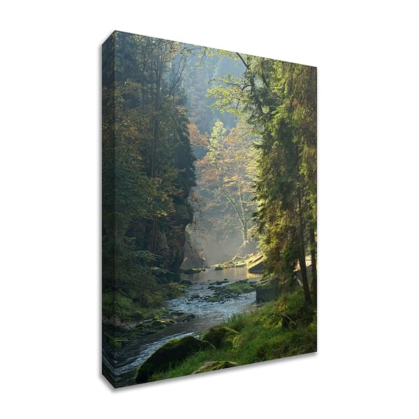 Fine Art Giclee Print on Gallery Wrap Canvas 36 In. x 24 In. Paradise Found Multi Color