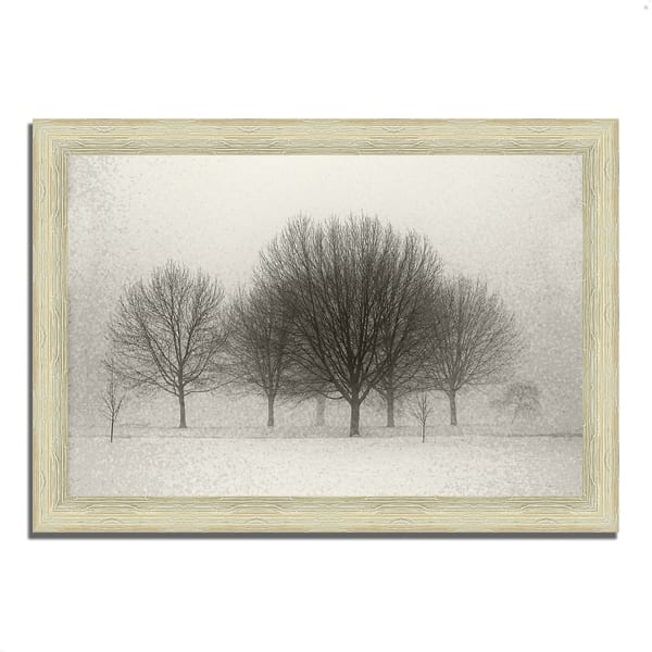 Framed Photograph Print 36 In. x 26 In. Fading Memories Multi Color