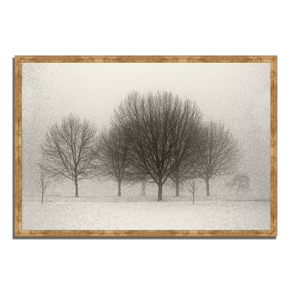 Framed Photograph Print 38 In. x 26 In. Fading Memories Multi Color