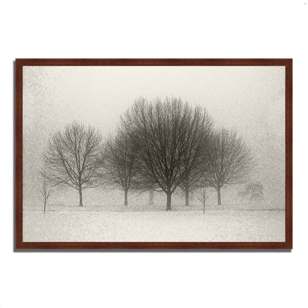 Framed Photograph Print 47 In. x 32 In. Fading Memories Multi Color
