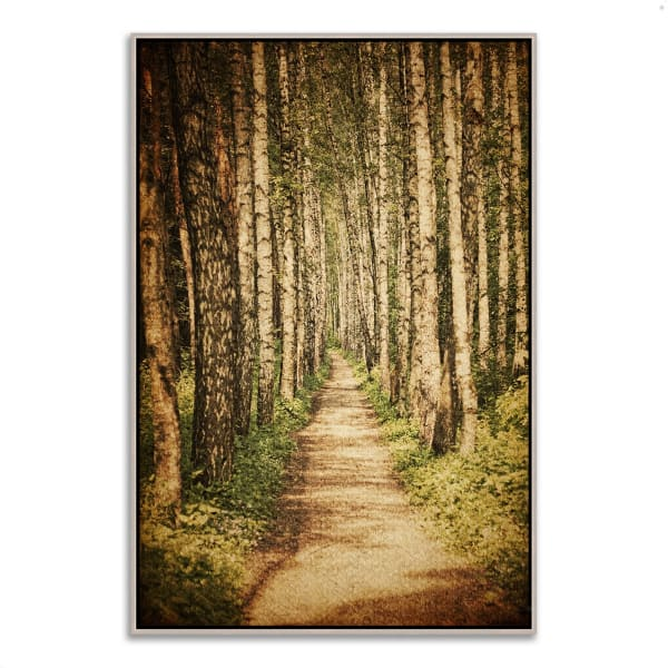 Fine Art Giclee Print on Gallery Wrap Canvas 22 In. x 32 In. The Old Aspen Trail Multi Color