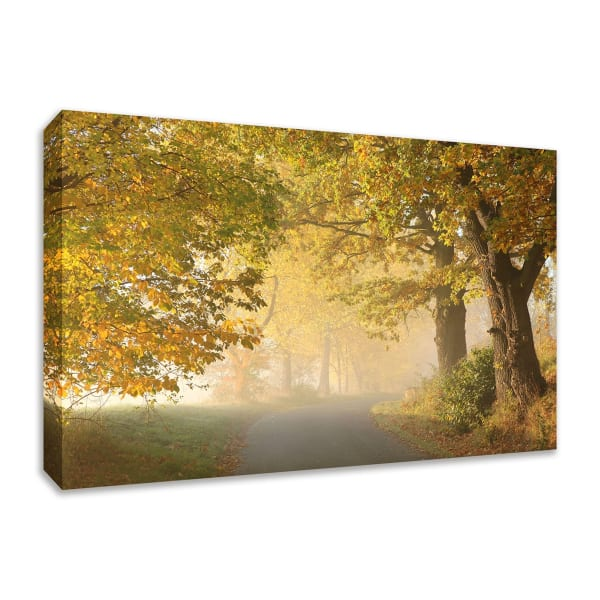 Fine Art Giclee Print on Gallery Wrap Canvas 36 In. x 24 In. On A Misty Autumn Morning Multi Color