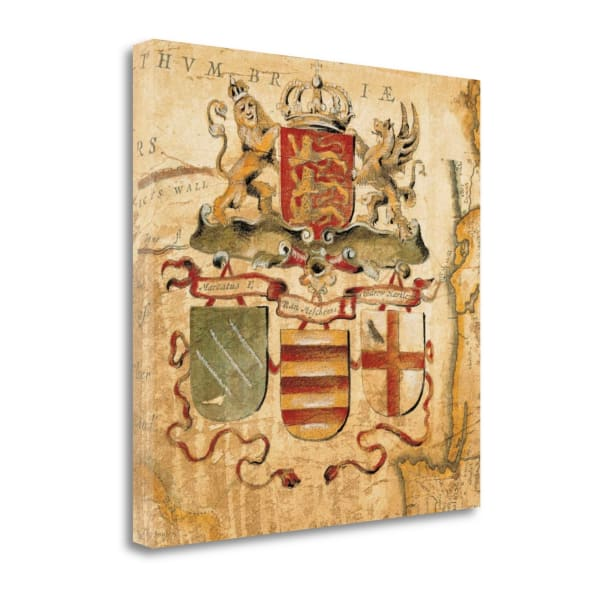 Fine Art Giclee Print on Gallery Wrap Canvas 20 In. x 20 In. Terra Nova IV By Liz Jardine Multi Color