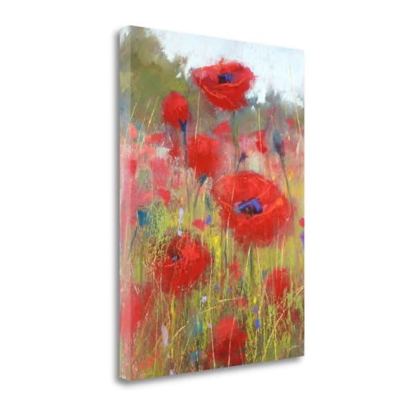 The Poppy Field By Karen Margulis Wrapped Canvas Wall Art