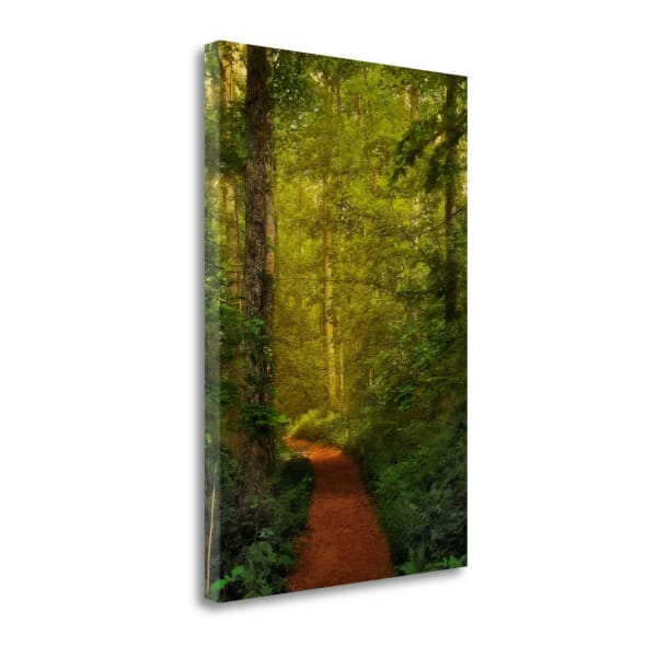 Fairytale Path By Natalie Mikaels Wrapped Canvas Wall Art