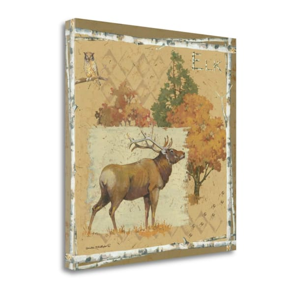 Elk By Anita Phillips Wrapped Canvas Wall Art