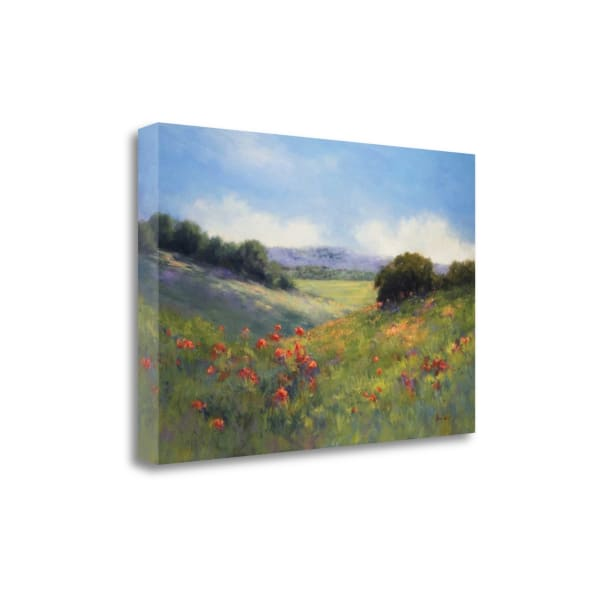 Poppies With A VIew By Alice Weil Wrapped Canvas Wall Art