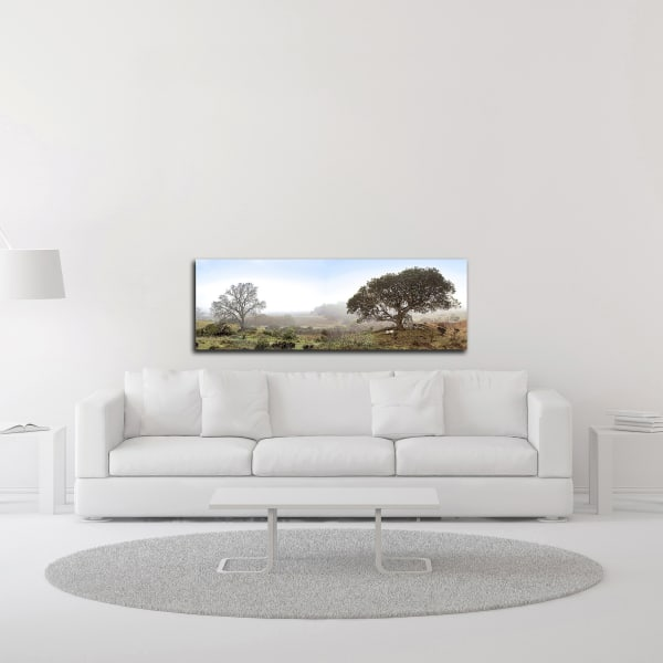 Sonoma Oak Trees No. 1 by Alan Blaustein Wrapped Canvas Wall Art