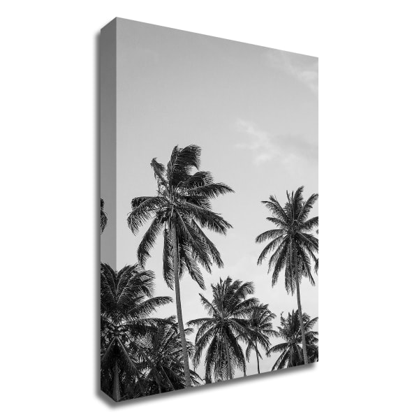 Palms in Grey by Design Fabrikken Wrapped Canvas Wall Art