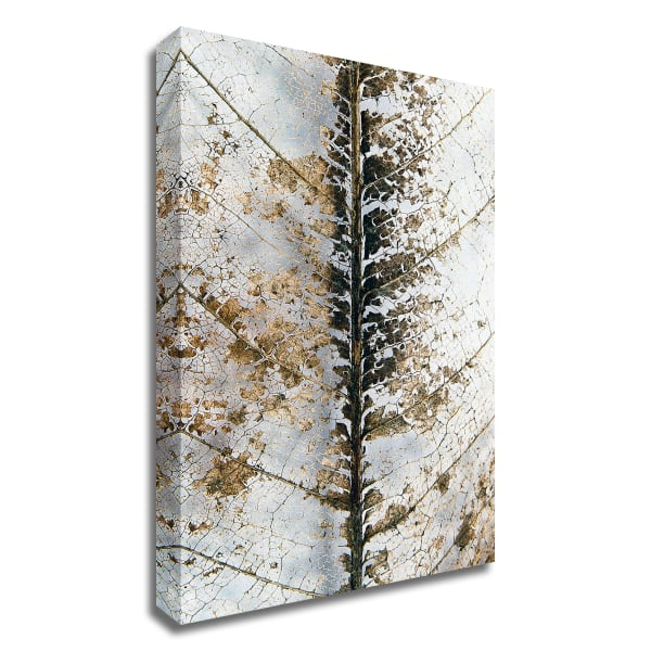 Close Up by Design Fabrikken Wrapped Canvas Wall Art