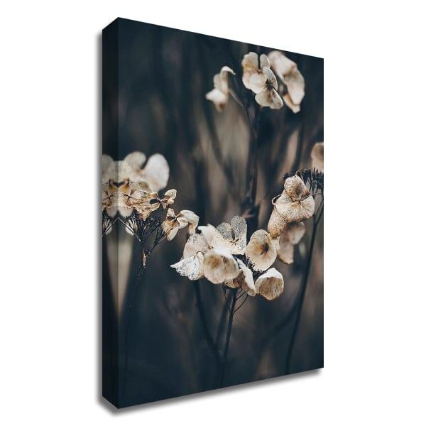 Secret 4 by Design Fabrikken Wrapped Canvas Wall Art