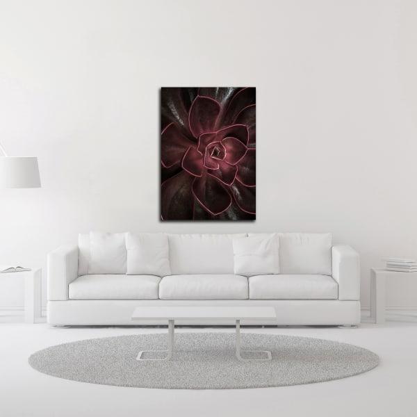 Secret 16 by Design Fabrikken Wrapped Canvas Wall Art