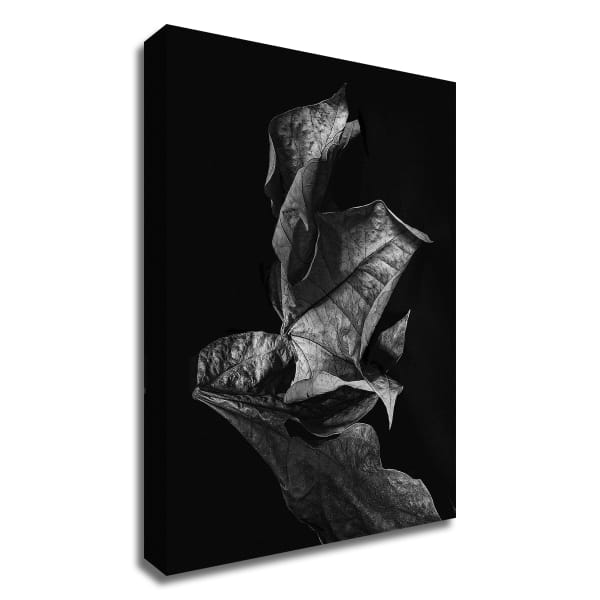 Leaf Composition, Dark by Design Fabrikken Wrapped Canvas Wall Art