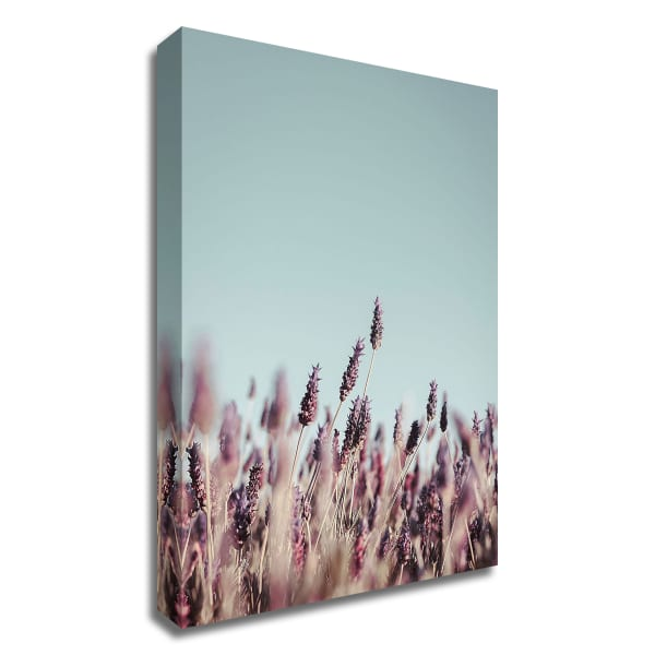 Field Haze by Design Fabrikken Wrapped Canvas Wall Art