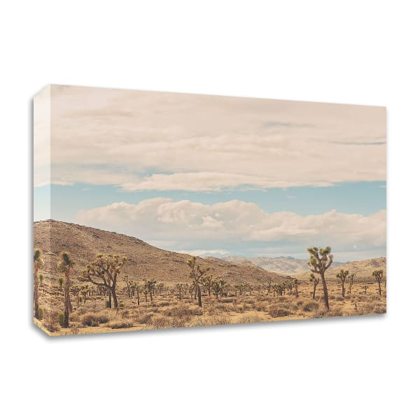 Untitled No. 10 by Myan Soffia Wrapped Canvas Wall Art