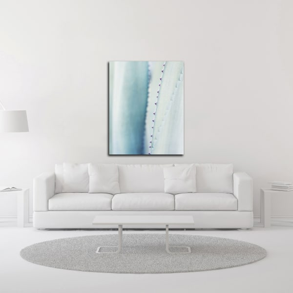 Pale Blue Agave No. 2 by Lupen Grainne Wrapped Canvas Wall Art