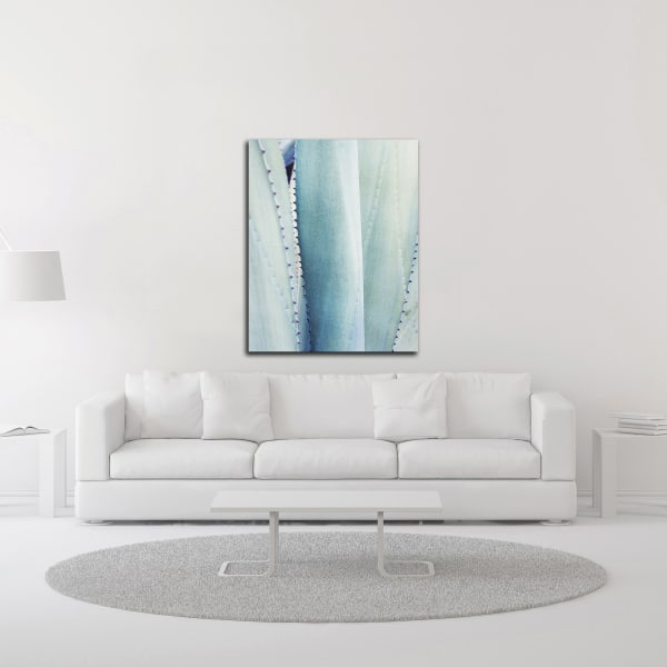 Pale Blue Agave No. 3 by Lupen Grainne Wrapped Canvas Wall Art