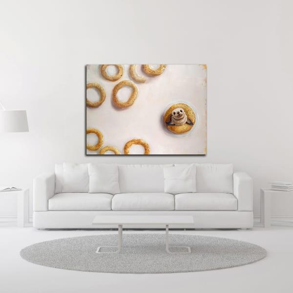 Sealrio by Lucia Heffernan Wrapped Canvas Wall Art