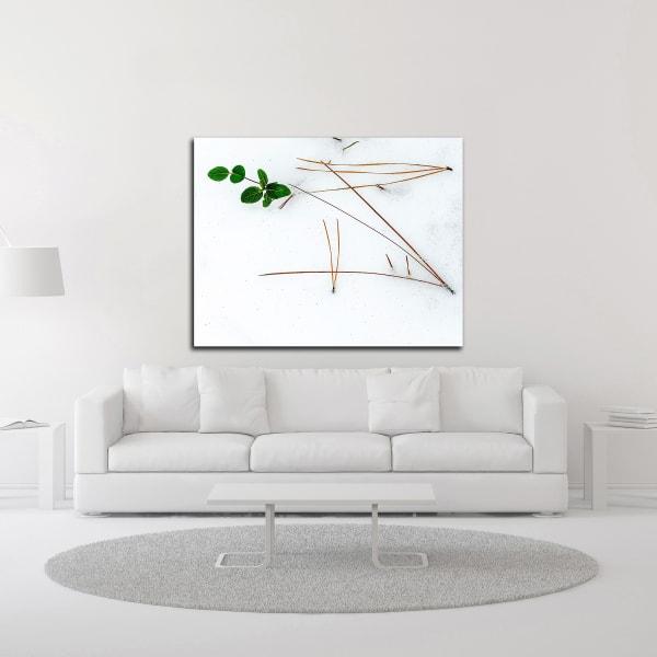 Winter Foliage by David Hammond Wrapped Canvas Wall Art